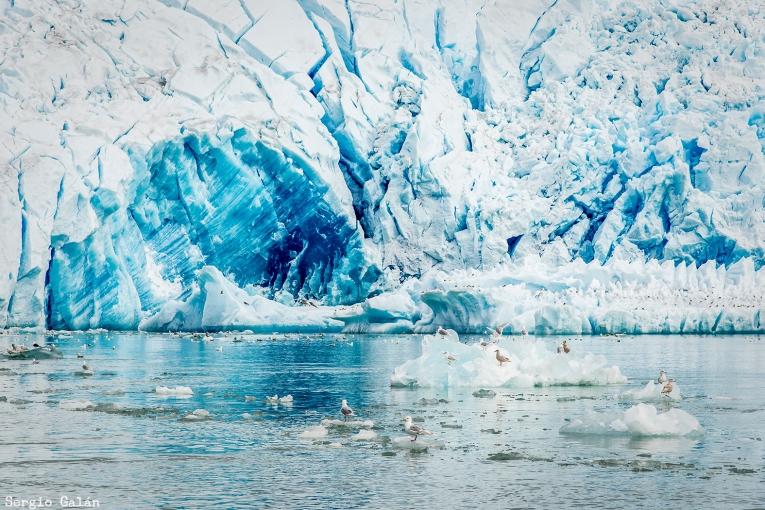 Qaleraliq_Glacier_01