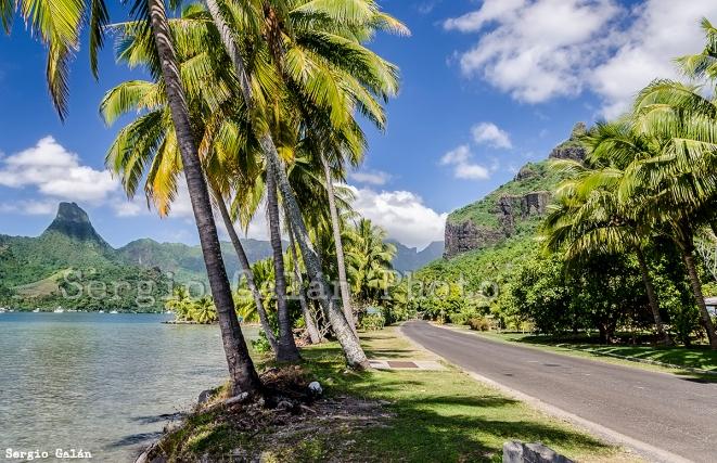 Mo'orea. Polinesia Francesa.